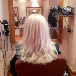 Full head foils back to back and a silver reflessi toner to achieve this gorgeous, clean, ice white colour. Back view.